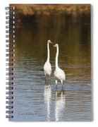 Two Egrets In The Pond Spiral Notebook