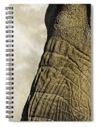 Two Elephants' Eyes Spiral Notebook