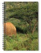 Two Elephants Walking Through The Grass Spiral Notebook