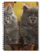 Two Fluffy Kittens Spiral Notebook