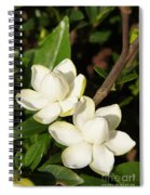 Awesome Blossoms Spiral Notebook