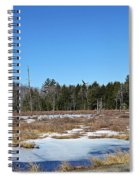Two Geese Flying Spiral Notebook