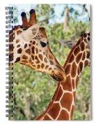 Two Giraffes Spiral Notebook