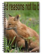 Two Good Reasons Not To Buy Fur Spiral Notebook