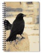 Two Graveyard Blackbirds Spiral Notebook