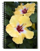 Two Hibiscus Spiral Notebook