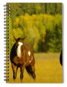 Two Horses Walking Along Spiral Notebook