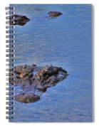 Two Hunting Spiral Notebook