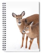 Two In The Snow Spiral Notebook