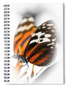 Two Large Tiger Butterflies Spiral Notebook