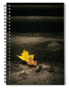 Two Leaves On A Staircase Spiral Notebook
