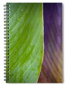 Two Leaves Spiral Notebook