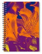 Two Lilies Gradient Spiral Notebook