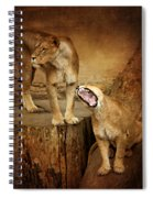 Two Lions Spiral Notebook