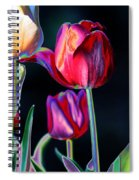 Two Lips 4 You Spiral Notebook