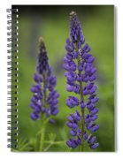 Two Lupine Spiral Notebook