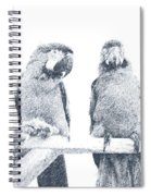 Two Macaws Spiral Notebook