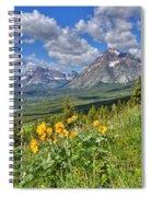 Two Medicine Valley Spiral Notebook