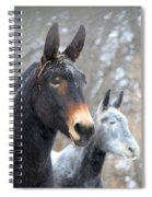 Two Mules For Sister Sara Spiral Notebook
