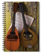 Two Old Mandolins Spiral Notebook