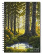 Two Old Spruce Spiral Notebook