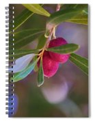 Two Olives Please Spiral Notebook
