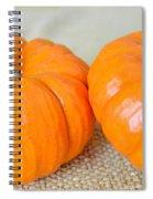 Two Orange Pumpkins Spiral Notebook