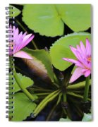 Two Pink Water Lilies Spiral Notebook