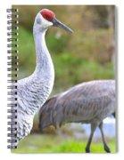 Two Pretty Sandhills Spiral Notebook