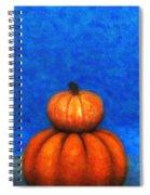 Two Pumpkins Spiral Notebook