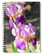 Two Purple Irises Spiral Notebook
