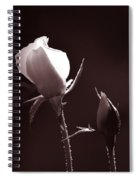 Two Rose Buds Spiral Notebook