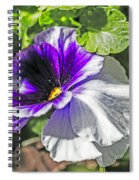 Two Shades Of Color Spiral Notebook