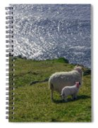 Two Sheep On The Cliffs At Sleive League - Donegal Ireland Spiral Notebook