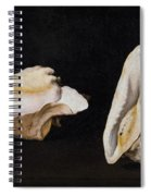 Two Shells Spiral Notebook