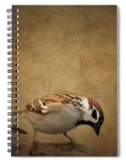 Two Sparrows Spiral Notebook