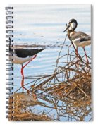 Two Stilts At The Pond Spiral Notebook