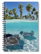 Two Stingrays 1 Spiral Notebook