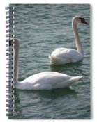 Two Swans A Swimming Spiral Notebook