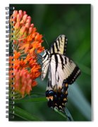 Two-tailed Swallowtail Spiral Notebook