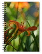 Two Tiger Lillies...   # Spiral Notebook