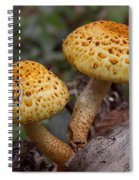 Two Toadstool Chums On A Log Spiral Notebook