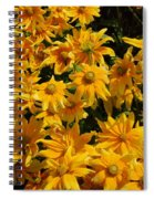 Two Toned Yellow Blooms Spiral Notebook