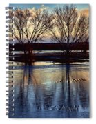 Two Trees In The Bosque Spiral Notebook