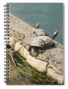 Two Turtles Spiral Notebook