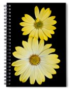 Two Yellow Spiral Notebook