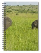 Ugandan Elephants Spiral Notebook