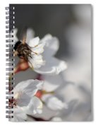 Ugly Pollinator Spiral Notebook