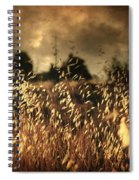 Un Illusione Spiral Notebook