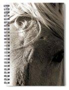 Unbrushed Mane Spiral Notebook